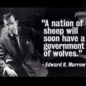 Sheep Wolves