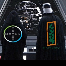 bayer-monsatan